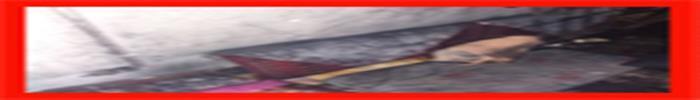 عملیات های آتش نشانان در 48 ساعته گذشته/آتش نشانی رشت