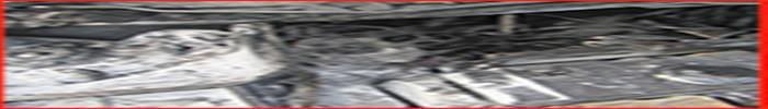 آتش سوزی خودروی پژو 206 در بلوار فجر آزادگان آتش نشانان را به محل حادثه خواند/ آتش نشانی رشت